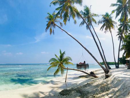 Die perfekte Welle - Surfen auf den Malediven