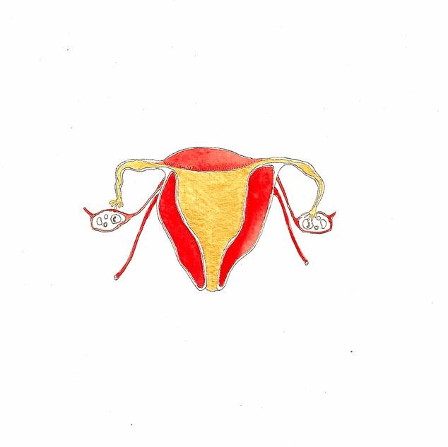 Golden Womb