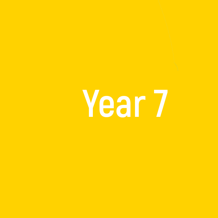 year7