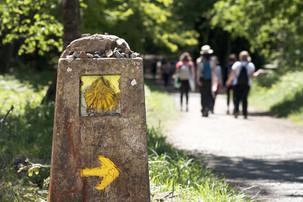 Guia para iniciantes do Caminho de Santiago de Compostela