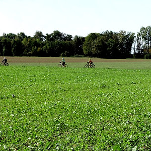 Pedal do Forte e Zuandeiros na Rota Romântica - Harburg a Landsberg