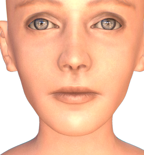 female_head_bust.png
