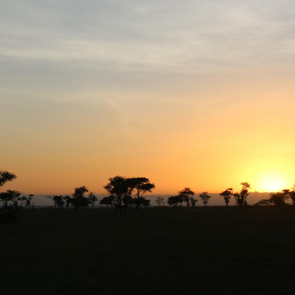 Landela Safaris