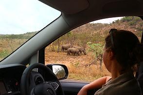 Landela Safaris - Erin