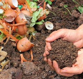 composting_edited.jpg