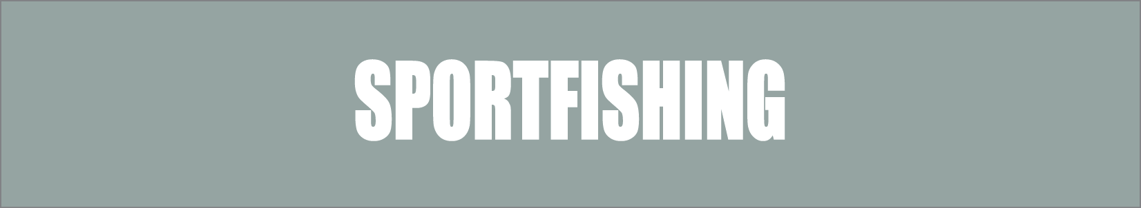 PM - Banners - Sportfishing - 1