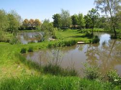Fishing Lake 1