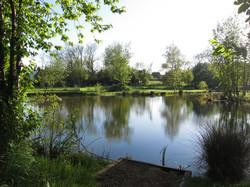Fishing Lake 4