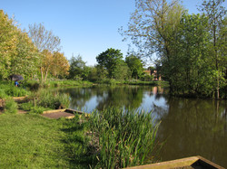 Fishing Lake 3
