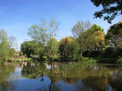 Fishing Lake 6