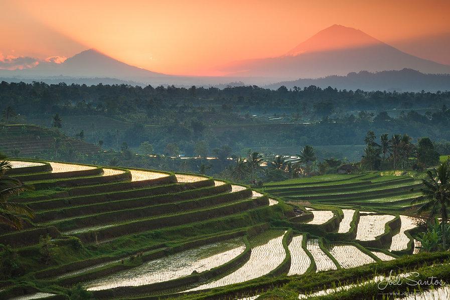 Irigasi di Indonesia.jpg