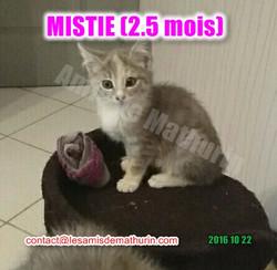 MISTIE Villecresnes 01