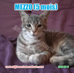 MEZZO modif 02