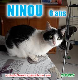 NINOU 01