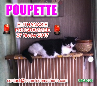 POUPETTE 01