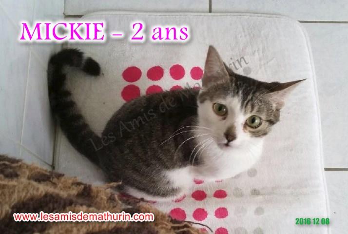 MICKIE 02