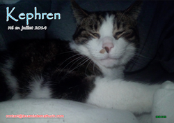 Kephren 12