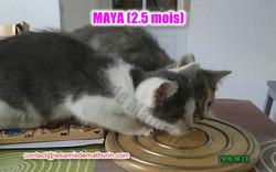 maya villecresnes 04