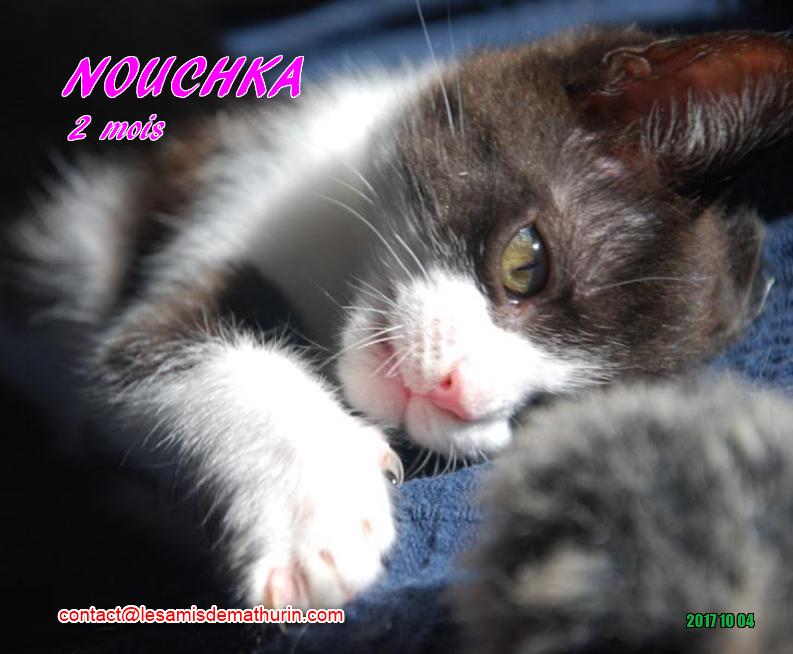 NOUCHKA 09