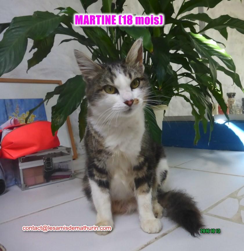 Martine modif 1