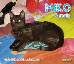 MIKO 02