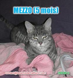 MEZZO modif 01