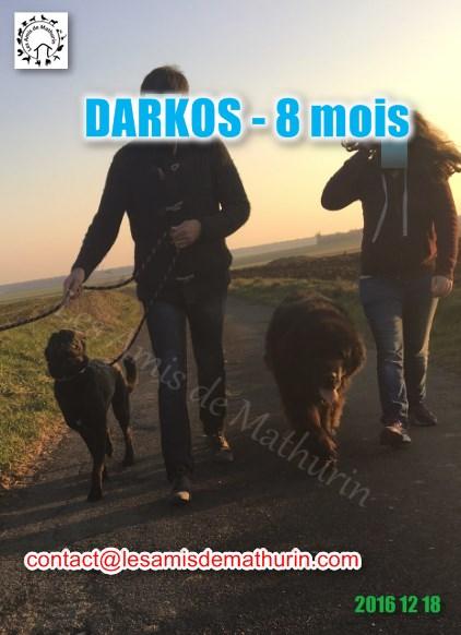 DARKOS LAM 06