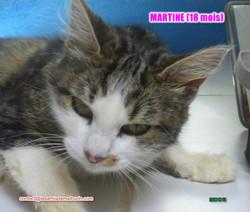 Martine modif 3