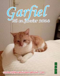 GARFIELD 02