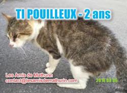 TIPOUILLEUX modif 2