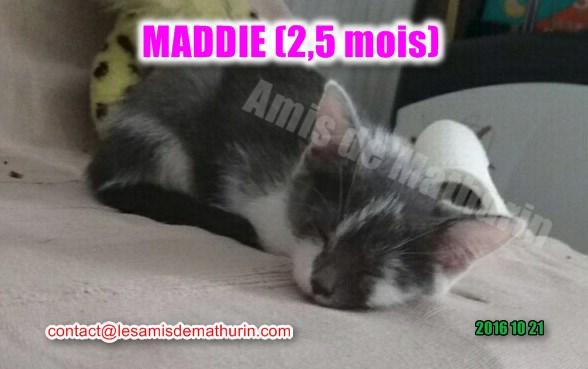 Maddie 6