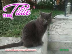 TITITE 03
