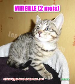 MIREILLE modif 03