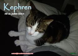 Kephren 10