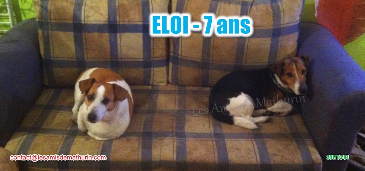 ELOI 05