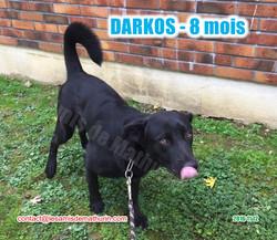 DARKOS modif 01