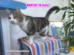 Martine modif 6