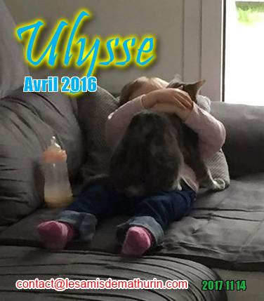 ULYSSE 06