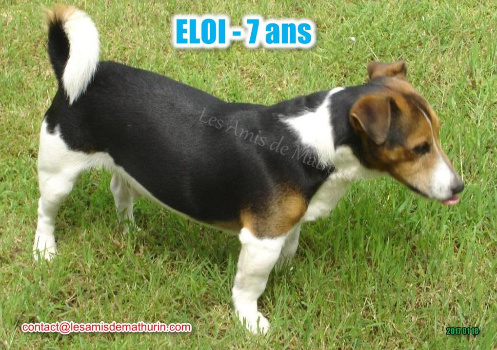 ELOI 10
