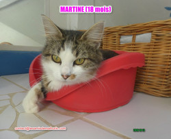 Martine modif 4