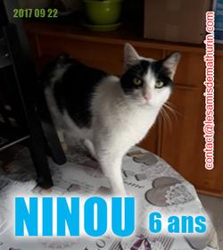 NINOU 02