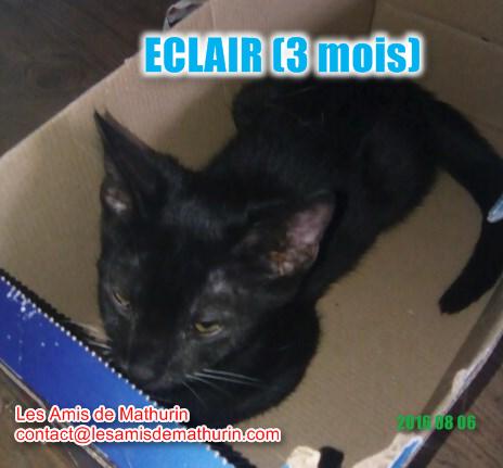 ECLAIR 1
