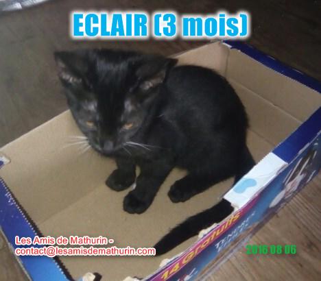 ECLAIR 2
