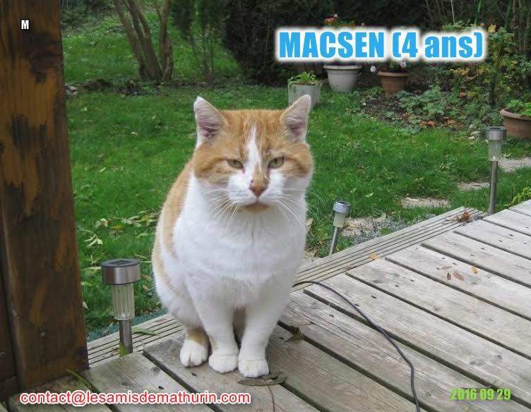 MACSEN modif1