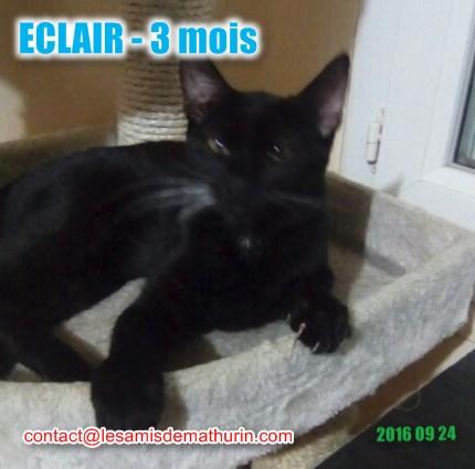 Eclair modif 1