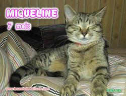 MIQUELINE modif 04