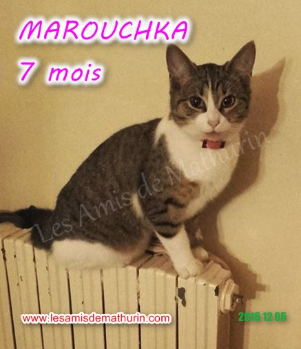 MAROUCHKA modif 02