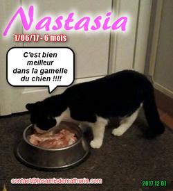 NASTASIA 03