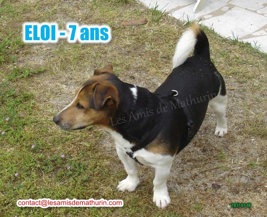 ELOI 02