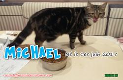 MICHAEL 03